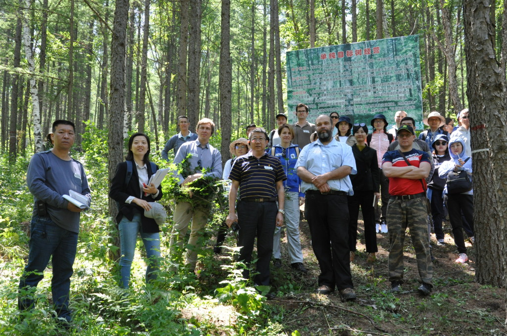 """Study tour """"Sustainable Forestry in China and Russia"""